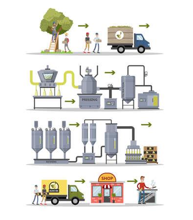 Olive oil production. Vector illustration.