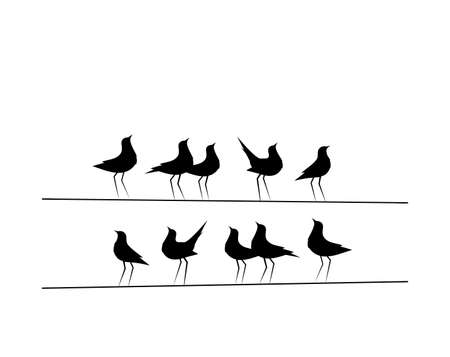 Illustration pour Birds On Wire Vector, Wall Decor, Birds Silhouettes. Minimalist poster design, banner design. Eleventh Birds on Wire Illustration, Wall Art Decor, Wall Decals isolated on white background - image libre de droit