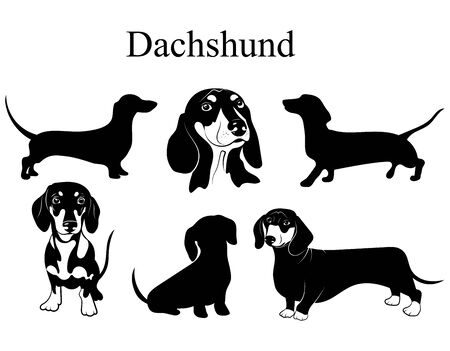 Photo for Dachshund set. Collection of dogs. Black white illustration of a dachshund dog. Vector drawing of a pet. Tattoo. - Royalty Free Image