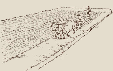 Illustration pour Vector monochrome line drawing in the style of the book engraving. Primitive agriculture. One farmer plows the land plot pulled on a pair of oxen. Second sows grain plowed field - image libre de droit