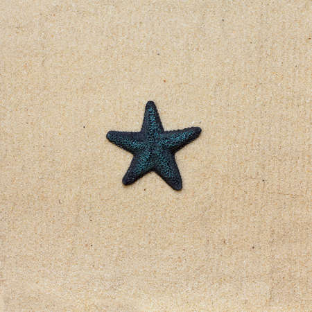 Blue starfish on the bright sea sand