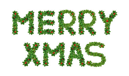 Foto de Holly With Berry Letters alphabet. Holly Leaves with berry's in the form of the merry Xmas. Isolated on white - Imagen libre de derechos