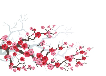 Background to blooming Sakuraのイラスト素材