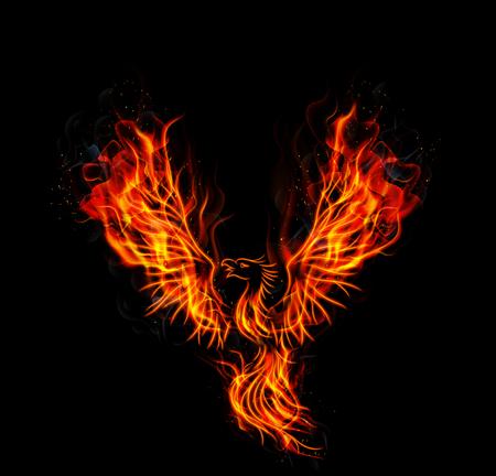 Illustration of Fire burning Phoenix Bird with black background