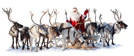 Santa Claus are near his deer in harness on the white background. He welcomes you and is waving his hand.