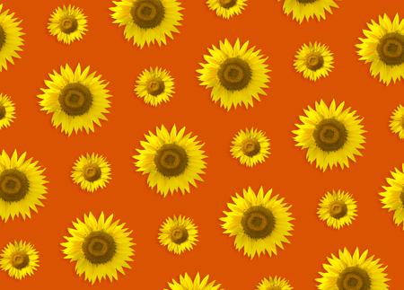 Photo pour Colorful pattern of yellow sunflower. Orange background - image libre de droit