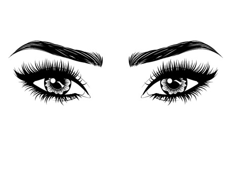 Illustration pour Female eyes with long black eyelashes and thick brows on white background. - image libre de droit