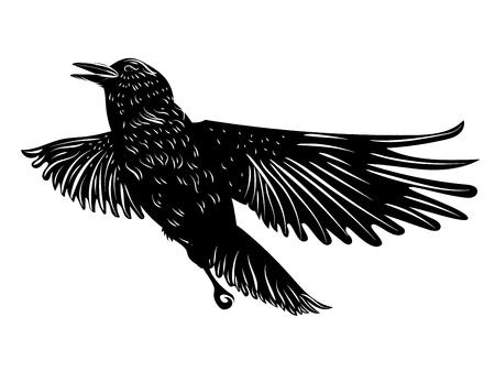 Illustration pour Stylized silhouette of a black raven, crow on white background. - image libre de droit