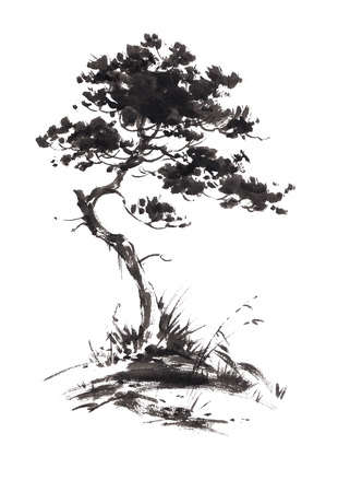 Illustration pour Ink illustration of growing pine tree with some grass. Sumi-e, u-sin, gohua painting style. Silhouette made up of black brush strokes isolated on white background. - image libre de droit