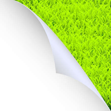 Green grass and paper corner.Vector eps10