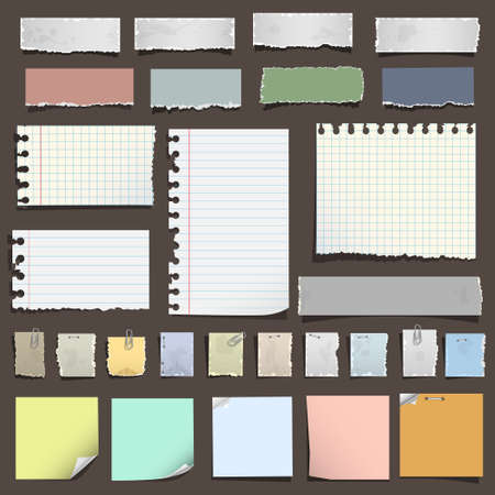 Collection of various notes paper. Vector eps10
