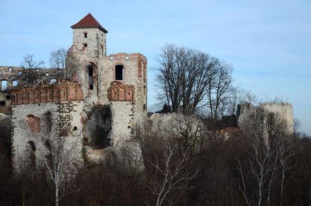 Castle ruins (Tenczyn in Poland)