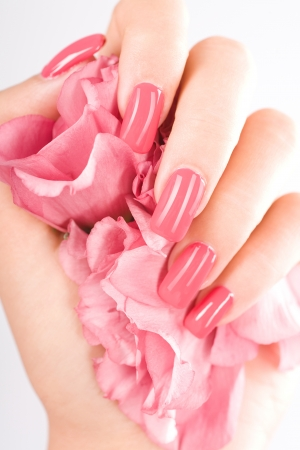Photo pour Beautiful woman hands with rose - image libre de droit