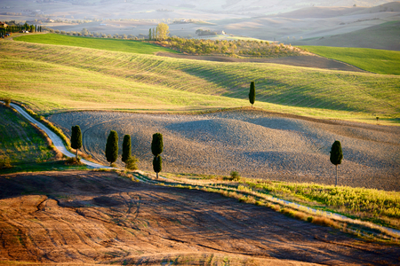 Tuscan Countryside Italian landscape