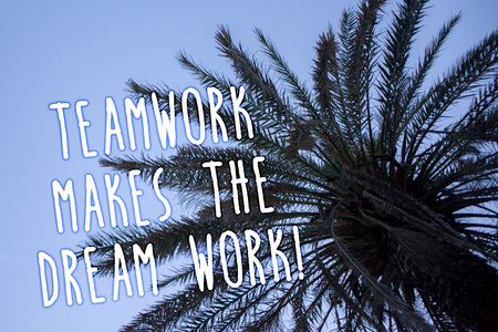 Handwriting text Teamwork Makes The Dream Work Call. Concept meaning Camaraderie helps achieve success Tall palm tree blue sky ideas messages thoughts feelings reflections