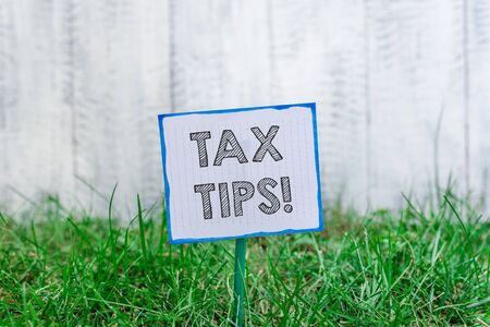 Photo for Handwriting text Tax Tips. Conceptual photo compulsory contribution to state revenue levied by government Plain empty paper attached to a stick and placed in the green grassy land - Royalty Free Image