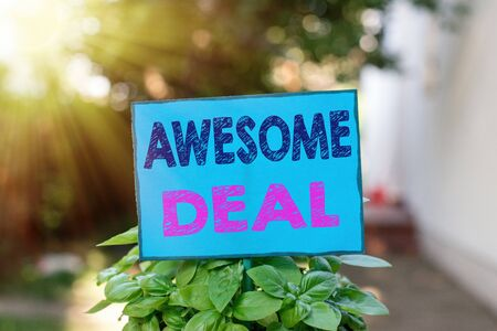 Text sign showing Awesome Deal. Business photo text impressive agreement given to other party for mutual benefit Plain empty paper attached to a stick and placed in the green leafy plants