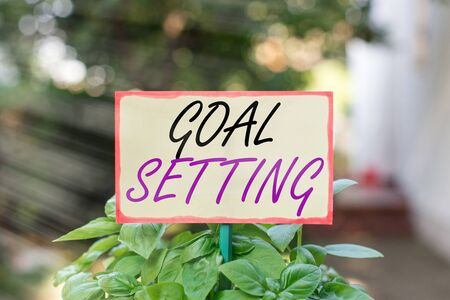 Text sign showing Goal Setting. Business photo text dream big motivational advice or reminder to take action Plain empty paper attached to a stick and placed in the green leafy plants
