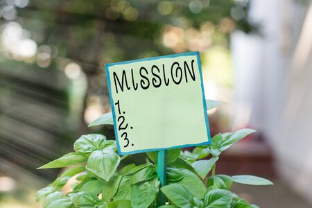 Photo pour Conceptual hand writing showing Mission. Concept meaning important task are given to do one that involves traveling Plain paper attached to stick and placed in the grassy land - image libre de droit