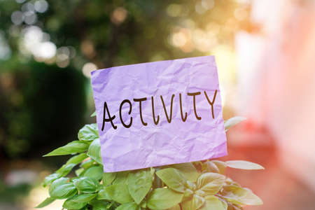 Text sign showing Activity. Business photo showcasing the condition where many things are happening or move around Plain empty paper attached to a stick and placed in the green leafy plants