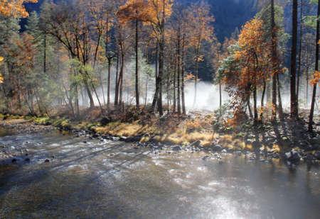 Foto de Nature in Yosemite national park in the fall - Imagen libre de derechos