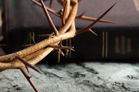 Crown of thorns and Bible on wood desk. Wood Cross. Concept love