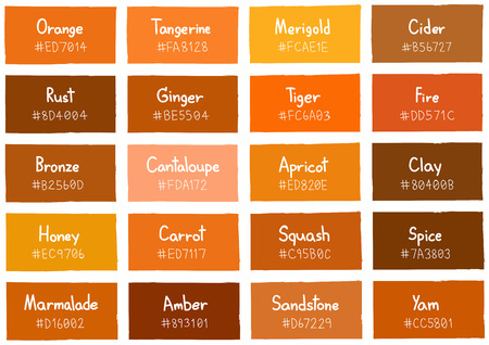 Orange Tone Color Shade Background with Code and Name Illustration
