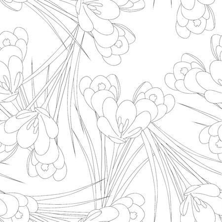 Illustration pour White Crocus Flower Outline on White Background. Vector Illustration. - image libre de droit
