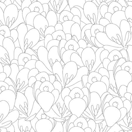 Illustration pour White Crocus Flower Outline Seamless Background. Vector Illustration. - image libre de droit