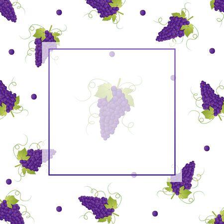 Illustration pour Pueple Grape Banner on White Background. Vector Illustration. - image libre de droit