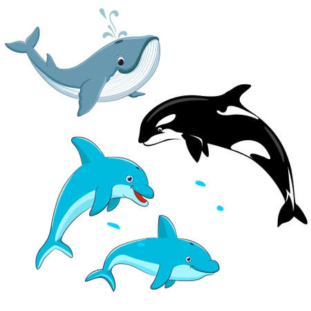 Illustration pour Set of vector whales and dolphins. Vector illustration of marine mammals, such as blue whale, dolphin, killer whale. - image libre de droit
