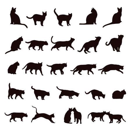 Foto für cat set - Lizenzfreies Bild