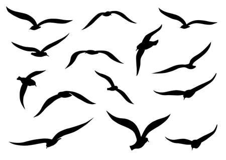 Black seagull silhouettes