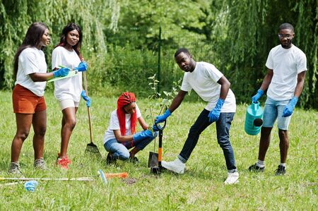 Photo pour Group of happy african volunteers planting tree in park. Africa volunteering, charity, people and ecology concept. - image libre de droit