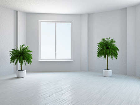 The empty room with plant and window