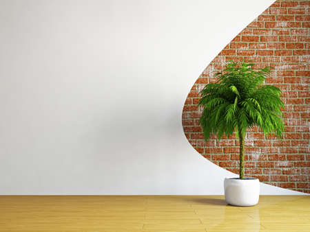 Photo pour The empty room with plant near the wall - image libre de droit