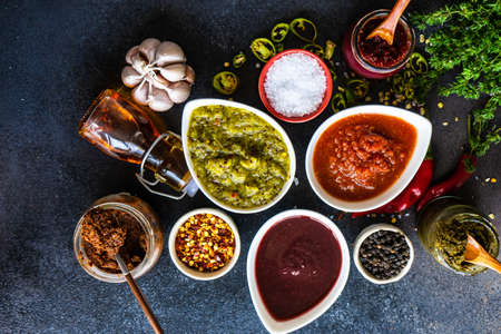 Photo for Variety of traditional georgian satsebeli sauces with kiwi, tomato and blackberry  on stone background with copy space - Royalty Free Image
