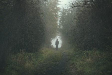 Walking lonely person on a forrest path in a dark and cold foggy day