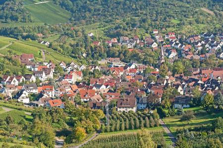 Viticulture in Stuttgart, Germany