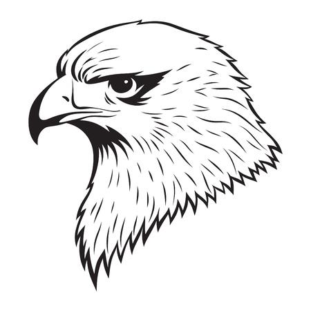 Simple illustration of Eagle head