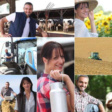 Photo pour Life on the farm collage - image libre de droit