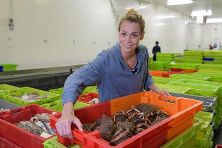 Photo pour fish factory staff at workplace - image libre de droit