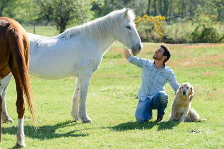 Photo pour portrait of man with horses - image libre de droit