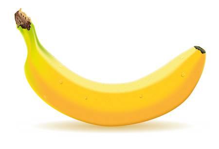 Illustration pour Detailed illustration of a one banana - image libre de droit