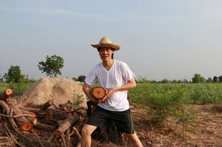 Man farmer standing and carrying timber beside the stack of firewood in the sugarcane farm and wearing a straw hat with white t-shirt.の写真素材