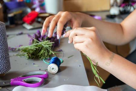 Foto de Hands of a florist at work. Working table with lavenders, old scissors and hank of hemp twine. Dry compositions of flowers plants for the interior. - Imagen libre de derechos