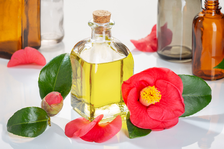 Photo pour Camellia oil bottle for beauty, skin care, wellness and medicinal purposes - image libre de droit