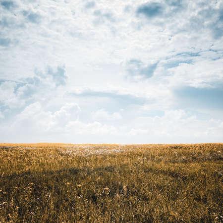Photo pour sky and autumn fields - image libre de droit