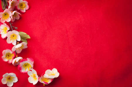 Photo pour celebrate Chinese New Year background with  beautiful sakura blossom frame. - image libre de droit