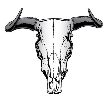 Ilustración de Western Bull or Steer Skull  illustration - Imagen libre de derechos